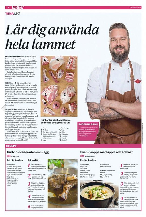Lamm_Hallå